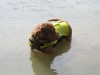 293_beach_boy_022_181